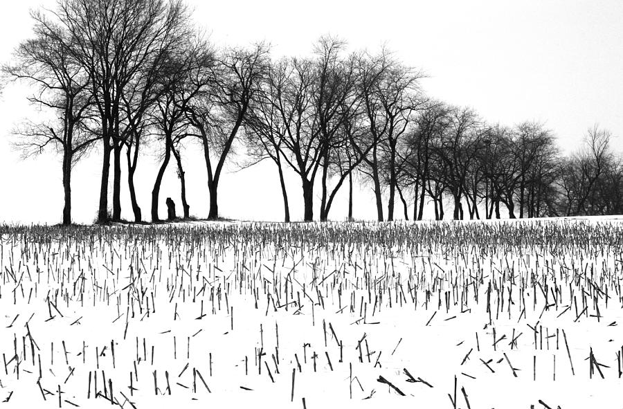 Winter Photograph - Touch Of Winter Blk N Wht by Chuck Kuhn