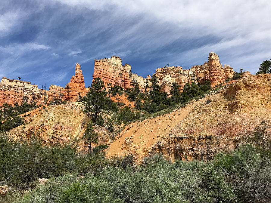 Towers at Bryce by Bill Gabbert