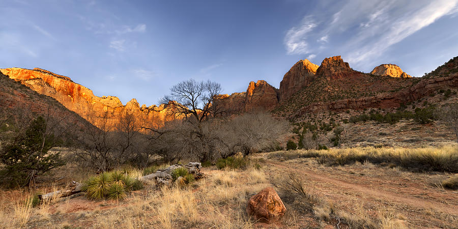 Zion Photograph - Towers Of The Virgin by Chad Dutson