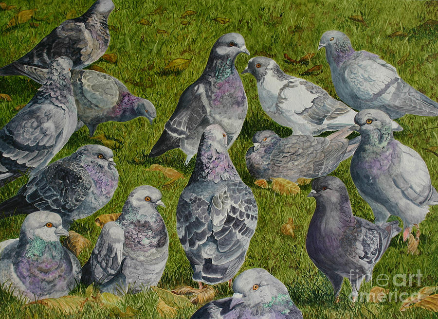 Pigeons Painting - Town Hall Meeting by Helen Shideler