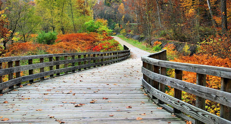 Towpath Photograph - Towpath In Summit County Ohio by Kristin Elmquist