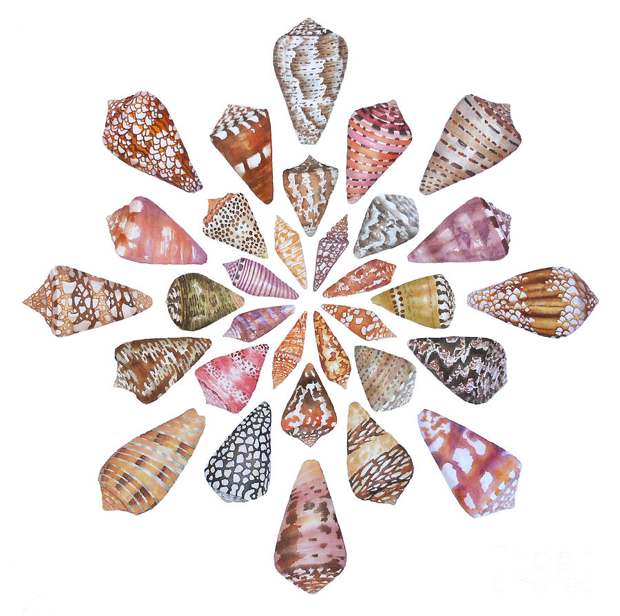 Cone Shells Painting - Toxic Tango III Cone Shells by Lucy Arnold