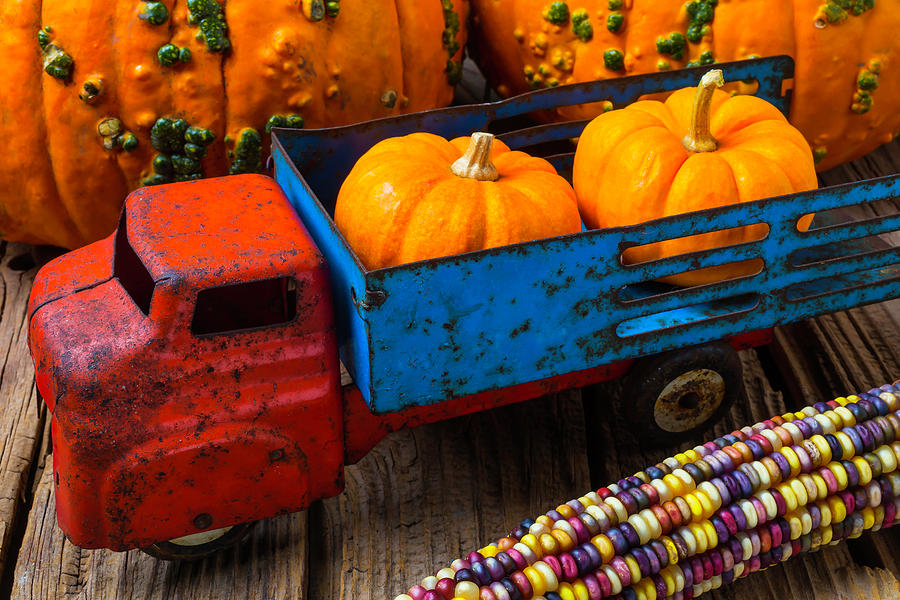 Toy Photograph - Toy Truck And Punkins by Garry Gay