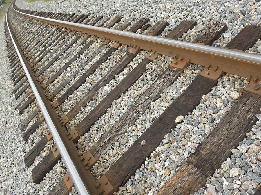 Tracks Photograph by Kim Zwick