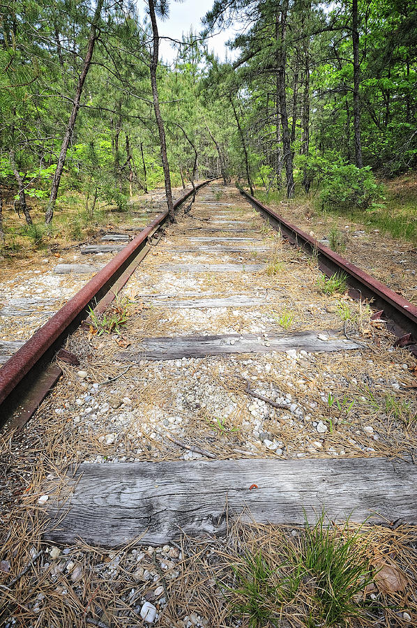 Outdoors Photograph - Tracks To Nowhere by Tim Doubrava