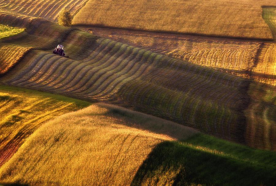 Field Photograph - Tractor by Fproject - Przemyslaw Kruk