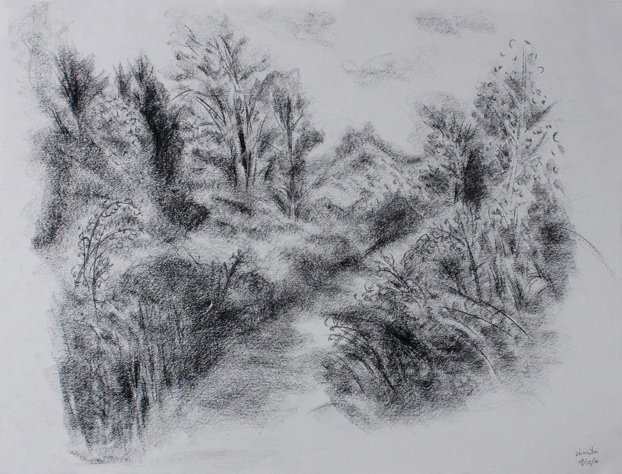 Trail Drawing - Trail 3 by Zhimin Zhai