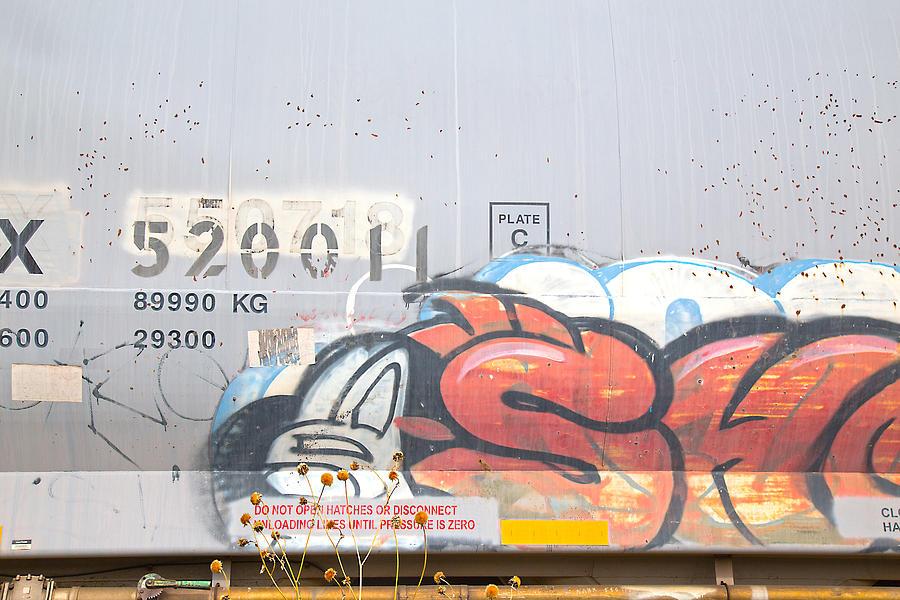 Train Art Photograph by Dart and Suze Humeston