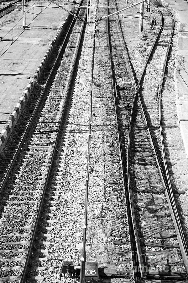 Iasi Photograph - Train Tracks by Gabriela Insuratelu