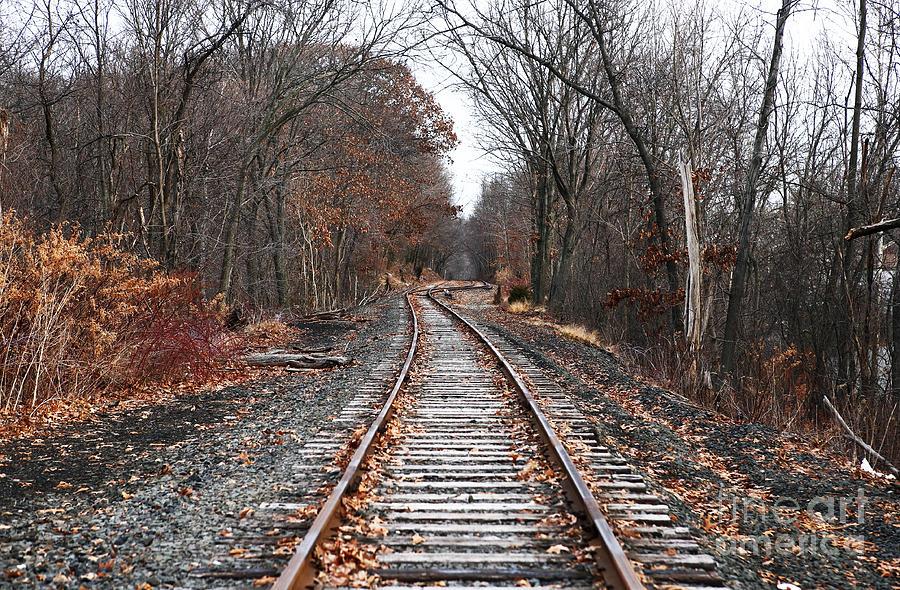 Photographer Photograph - Train Tracks by John Rizzuto