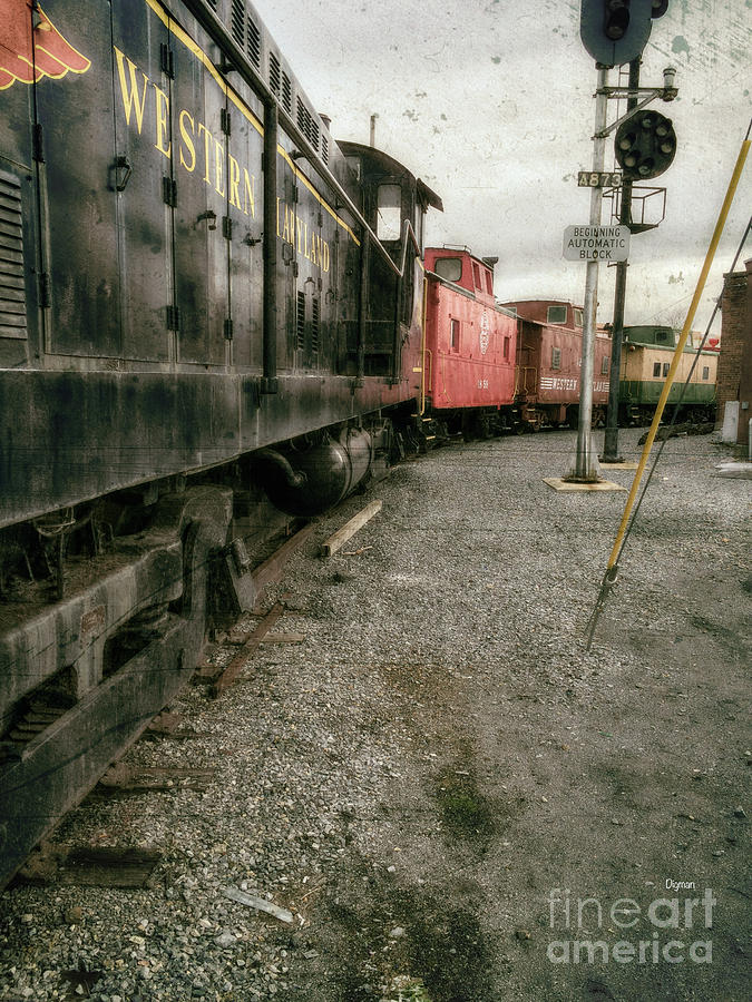 Trains Photograph - Trains By Western Maryland by Steven Digman