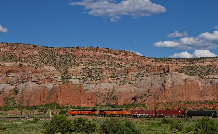 Trains by Ree Reid