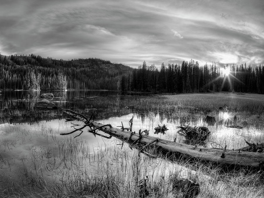 Beautiful Photograph - Tranquil Black And White 5 by Leland D Howard