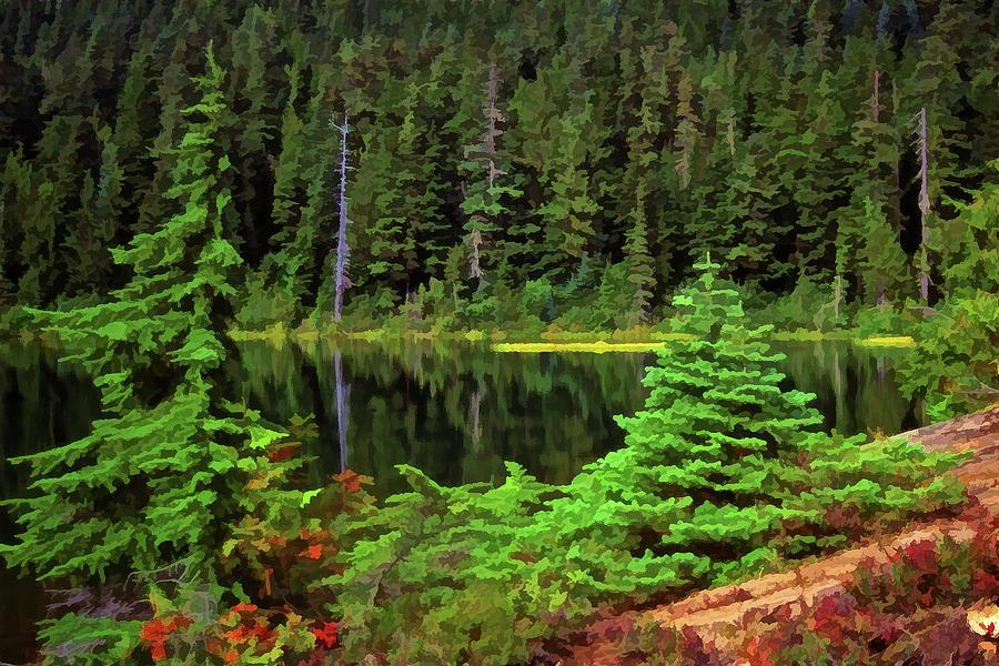 Tranquil Mountain Tarn by Richard Farrington