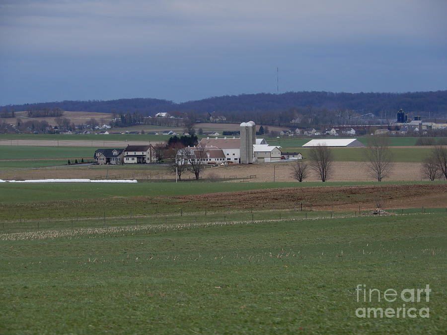 Amish Photograph - Tranquil Serenity by Christine Clark