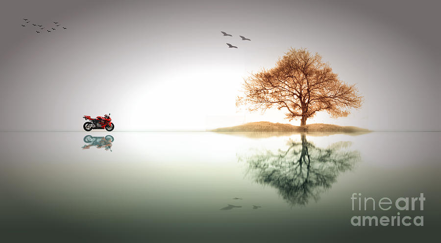 Peaceful Photograph - Tranquility by Charuhas Images