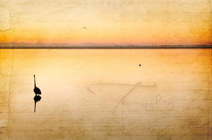 Crescent Beach Photograph - Tranquility by Joy Gerow