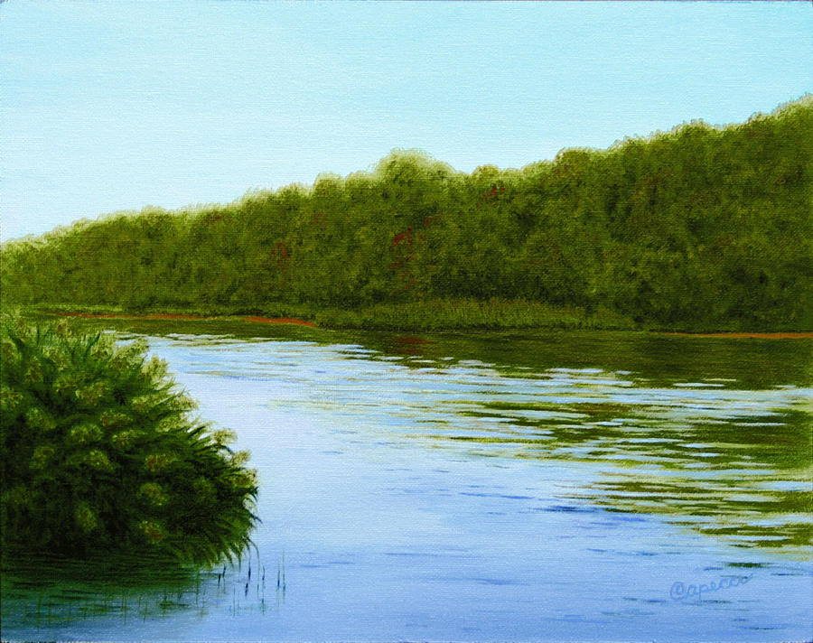 River Painting - Tranquility On Taylors Creek by Robin Capecci