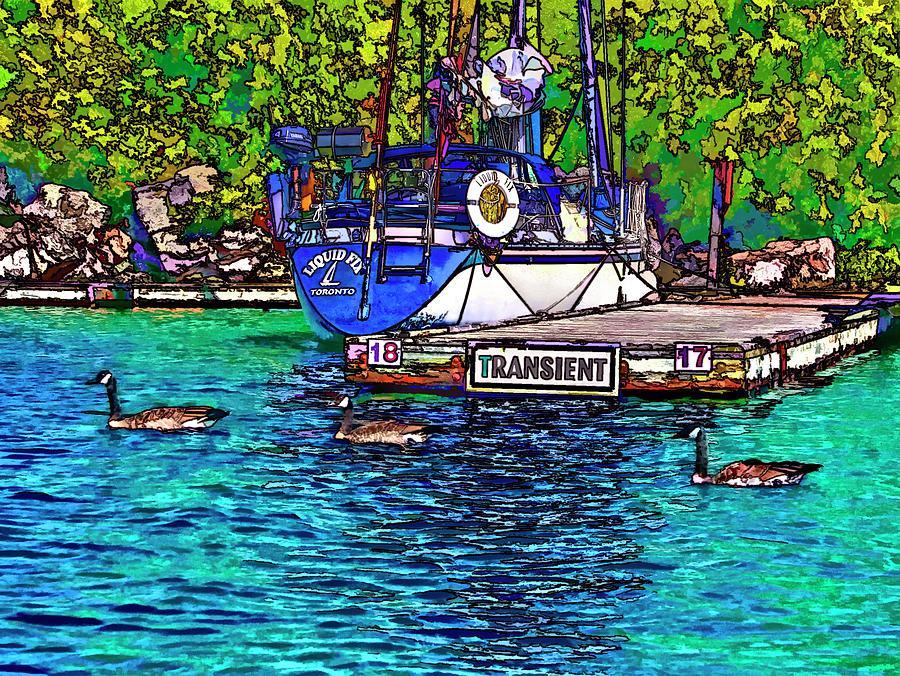 Yacht Photograph - Transients Cartoon by Steve Harrington