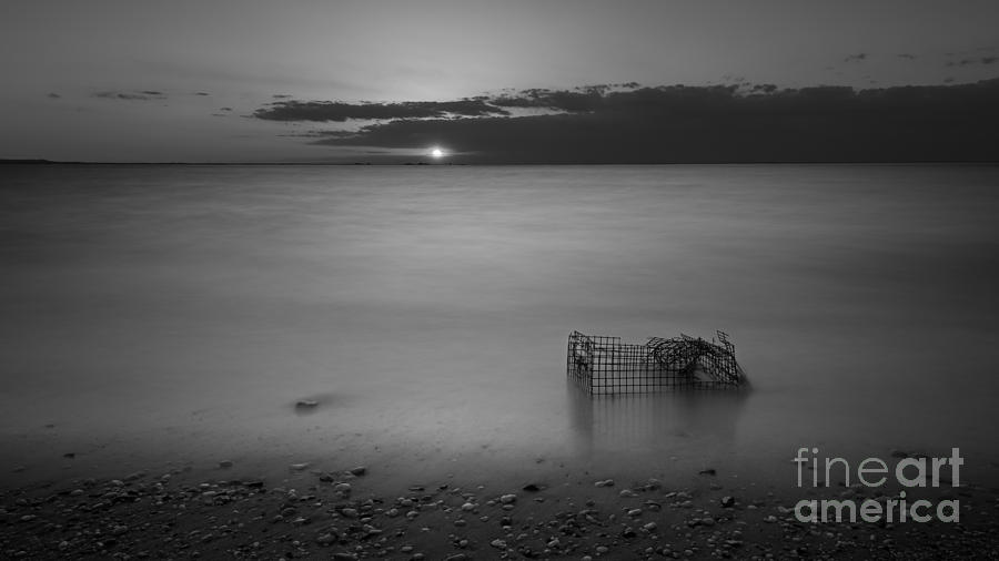 Sandy Hook Photograph - Trapped Bw by Michael Ver Sprill