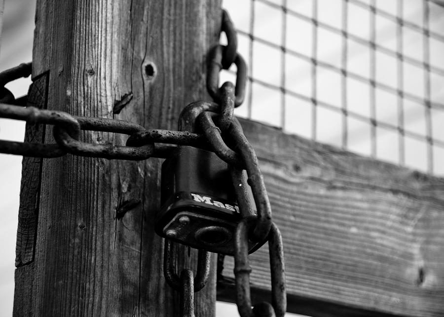 Lock Photograph - Trapped by Edward Myers