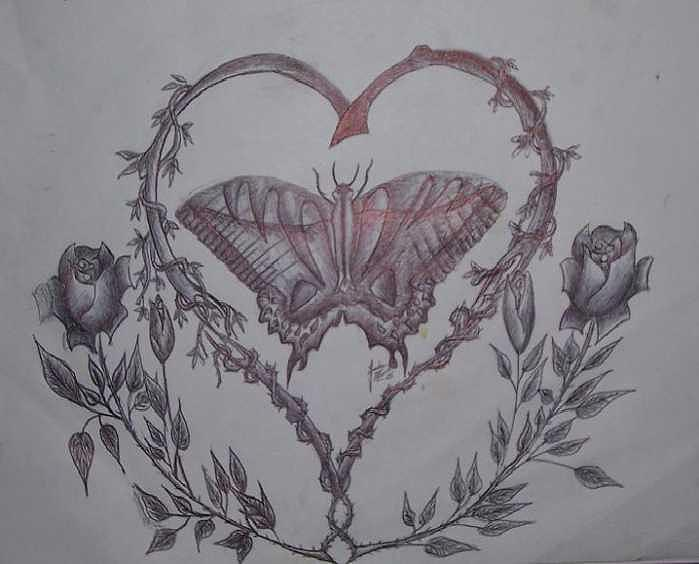 Butterflies Drawing - Trapped in love by Joshua  Moore