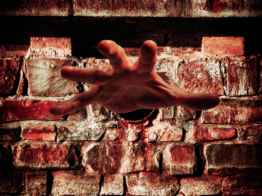 Hand Photograph - Trapped by Wim Lanclus