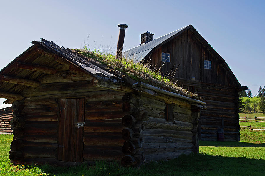 Historic Photograph - Trappers Cabin Clydesdale Barn by Robert Braley
