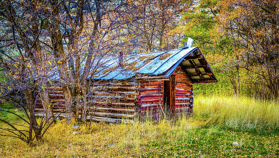 Landscape Photograph - Trappers Cabin by Jason Brooks
