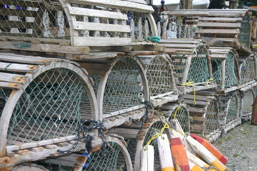 Lobster Traps Photograph - Traps by Dennis Curry