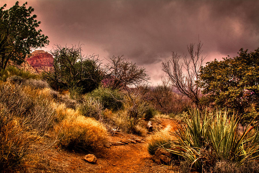 Red Rock Photograph - Traveling The Trail At Red Rocks Canyon by David Patterson
