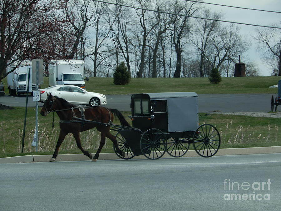 Amish Photograph - Travelling Into Town by Christine Clark