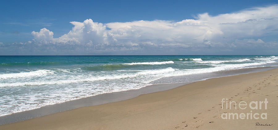 Beach Photograph - Treasure Coast Beach Florida Seascape C4 by Ricardos Creations