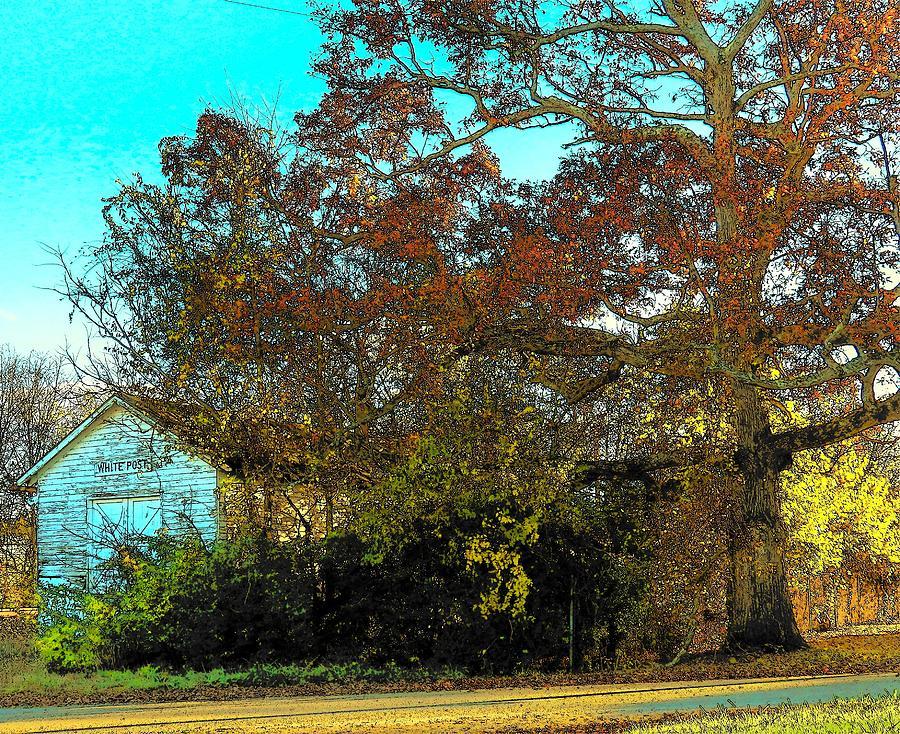 Tree Photograph - Tree At The Station by Joyce Kimble Smith