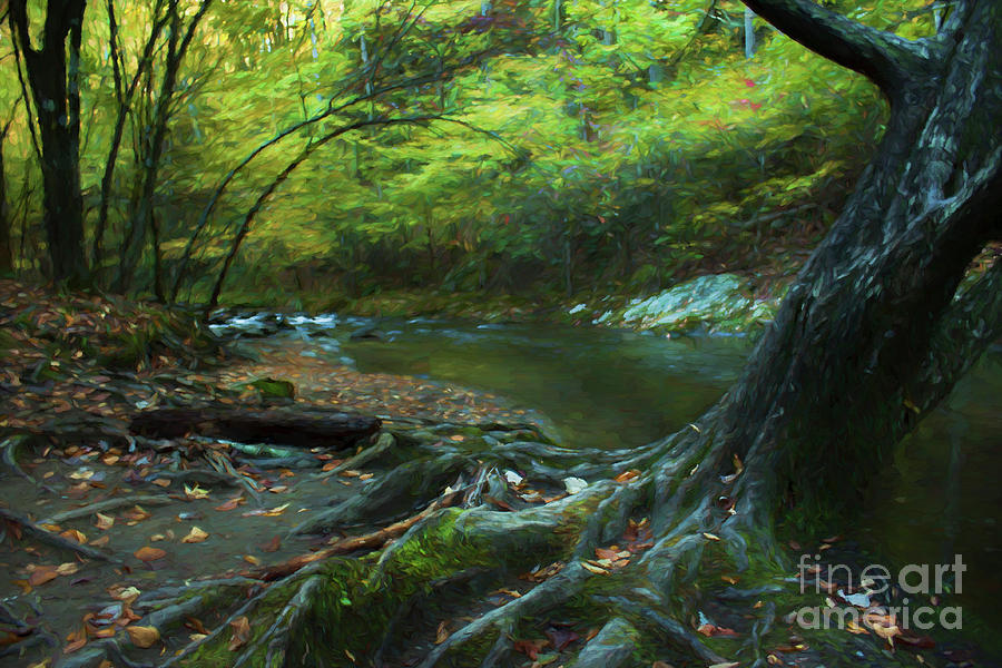Digital Digital Art - Tree By Water by Lena Auxier