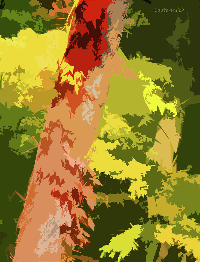 Trees Digital Art - Tree Enhancement by John Lautermilch