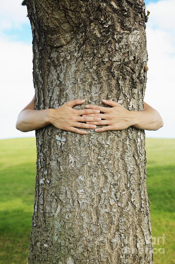Arm Photograph - Tree Hugger 1 by Brandon Tabiolo - Printscapes
