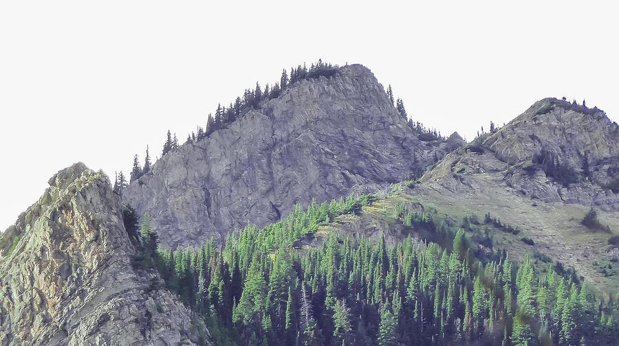 Mountain Photograph - Tree Line by Kevin Gobelman