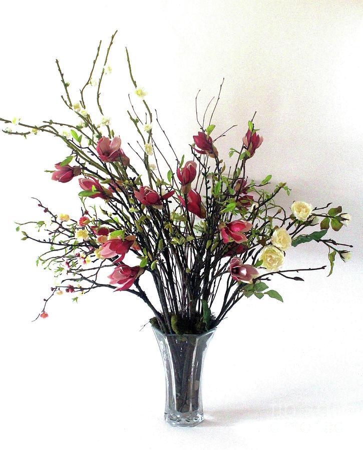 Botanical Photograph - Tree Magnolias by Fleursteppe