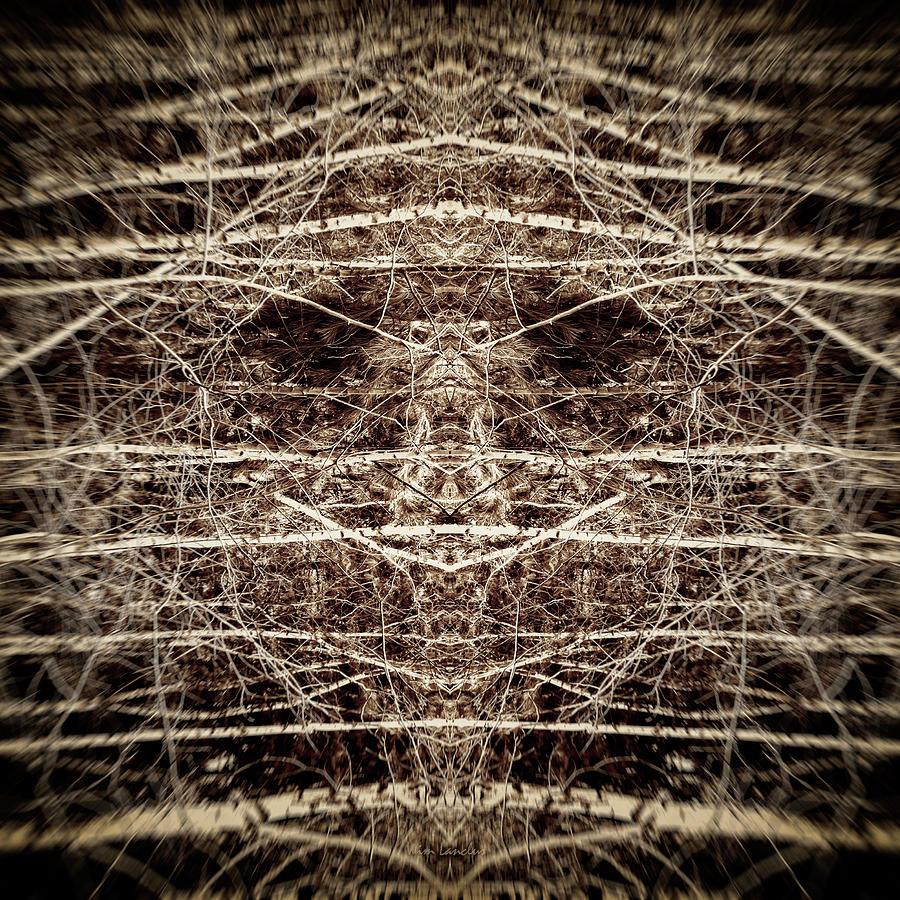 Trees Digital Art - Tree Mask by Wim Lanclus