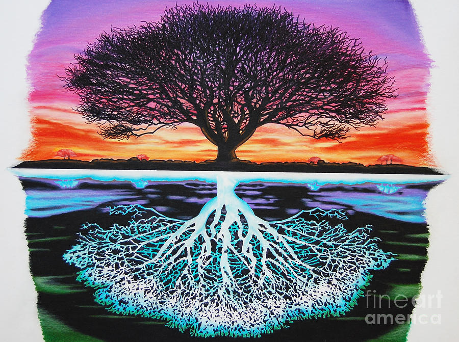 Tree Of Life Drawing - Tree Of Life And Negative by Brian Schuster
