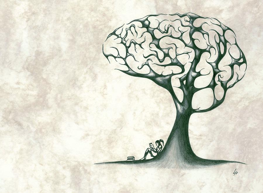Tree Of Lknowledge Drawing by Les Hardley