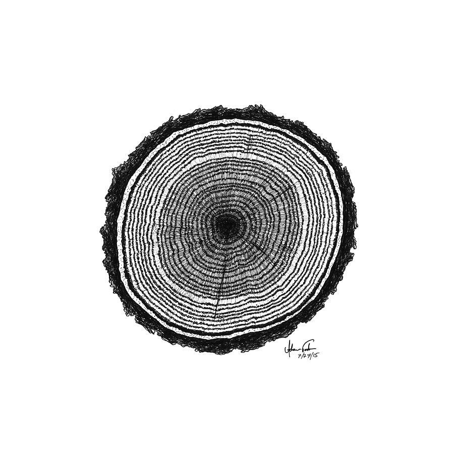 tree rings drawing by adam vereecke