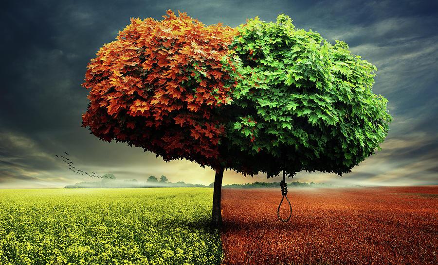 Landscape Digital Art - Tree by Simon Siwak