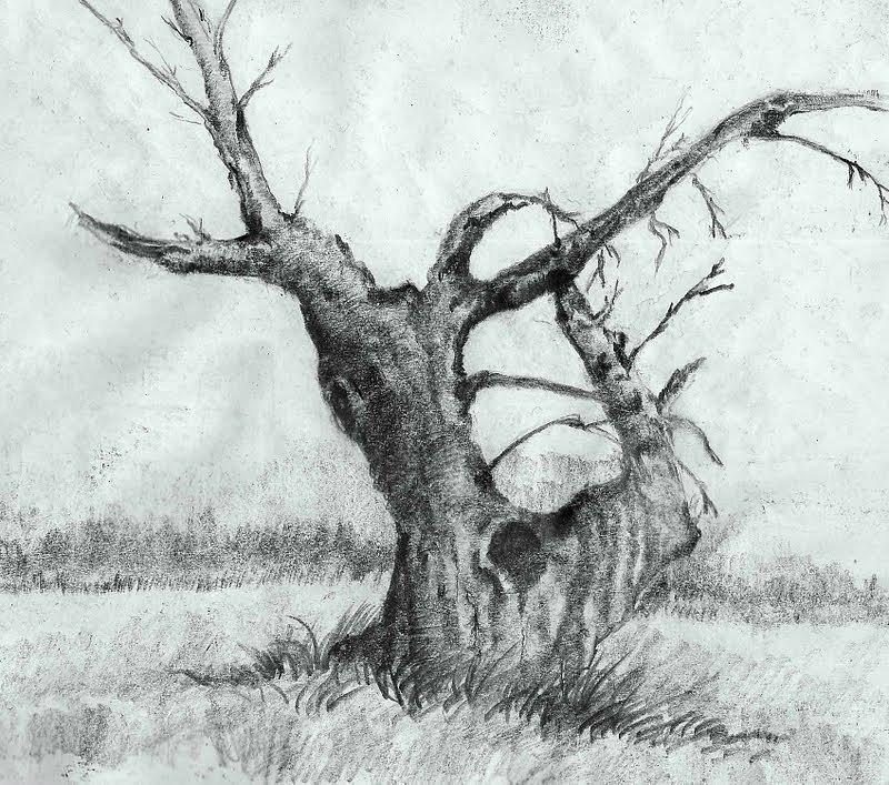 Tree Drawing by Suman Ghosh