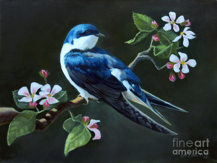 Tree Swallow Painting by Jeanne Newton Schoborg
