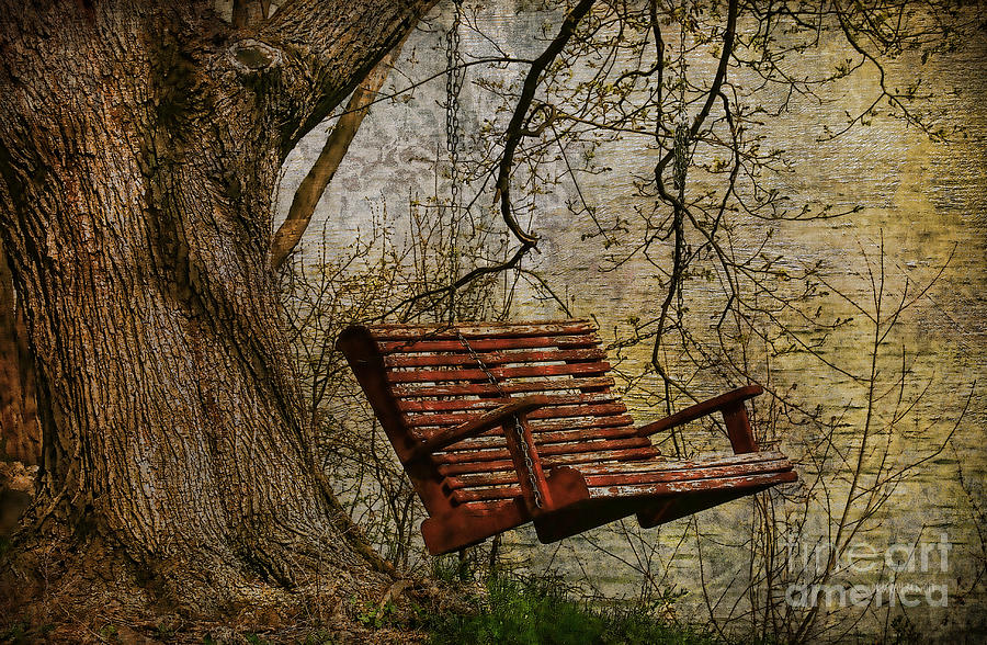 Tree Photograph - Tree Swing By The Lake by Deborah Benoit