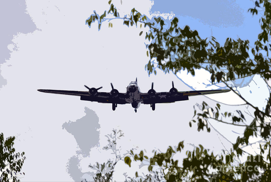 B 17 Photograph - Tree Top Fly Er by David Lee Thompson