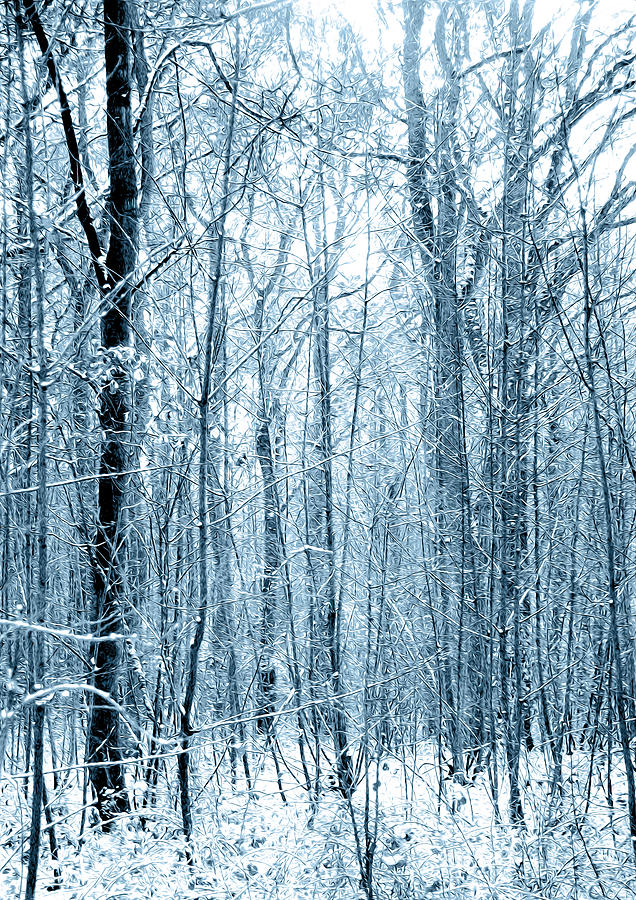 Artistic Digital Art - Tree Trunks Pattern by Svetlana Sewell