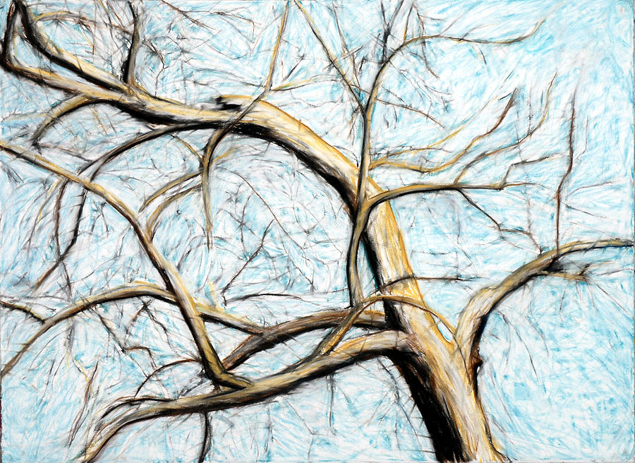 Treetop Drawing - Tree With Agitated Sky by John Terwilliger